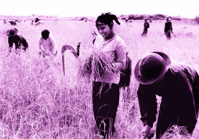 Xúc động hình ảnh khúc tráng ca của tuổi trẻ Việt Nam một thời hào hùng - 19