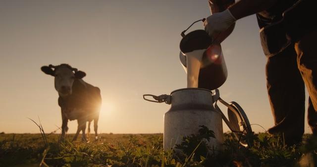 Trang trại Bellamys Organic thuộc nhóm 1% nông trại trên thế giới đạt chuẩn organic - 1