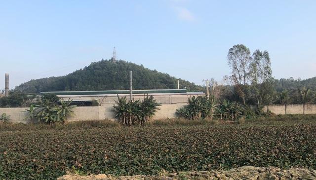 Dân treo băng rôn yêu cầu di dời nhà máy phân bón gây ô nhiễm - 4