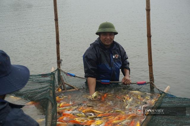 Nuôi loài cá sang chảnh, có con dài gần 1 mét, bán giá nghìn đô, 8X thu tiền tỷ - 1