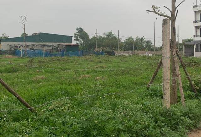 Bỏ tiền mua đất đợi chờ giá tăng là bán: Hành động làm hại nền kinh tế? - 1