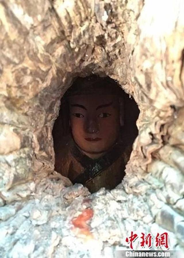 Kỳ lạ bức tượng Phật nằm trong hốc cây long não hơn 1.000 năm tuổi - 2