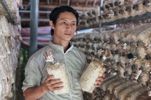 Cựu hướng dẫn viên du lịch chuyển nghề trồng nấm, thu về 400 triệu đồng/năm - 4