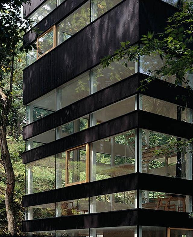 Ngôi nhà kỳ lạ lơ lửng giữa rừng xanh ở Nhật Bản - 8