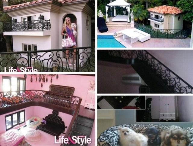 Paris Hilton mua túi Hermes, xây nhà 350 nghìn USD cho cún cưng - 4