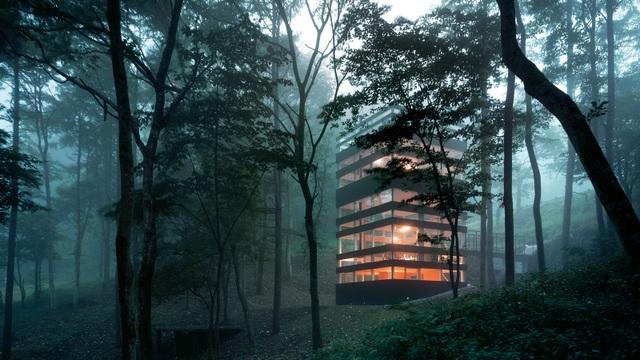 Ngôi nhà kỳ lạ lơ lửng giữa rừng xanh ở Nhật Bản - 1