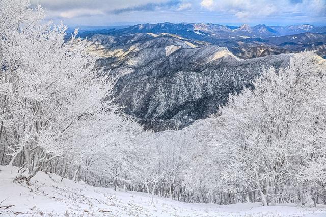 Về cố đô Nara hòa mình vào lễ hội leo núi mùa đông - 1