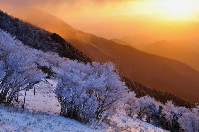 Về cố đô Nara hòa mình vào lễ hội leo núi mùa đông - 2