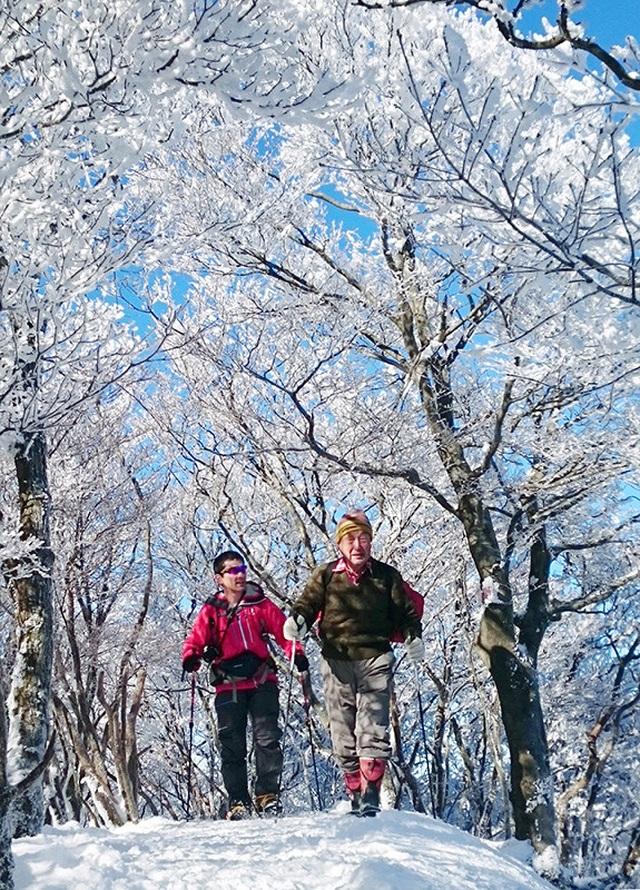 Về cố đô Nara hòa mình vào lễ hội leo núi mùa đông - 5