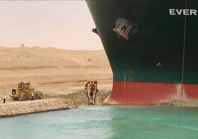 Dân mạng hiến kế giải cứu kênh Suez bằng loạt ảnh chế hài hước - 9