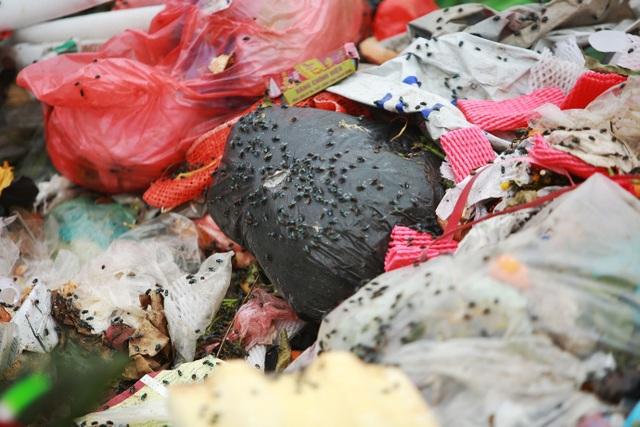 Dân lo lắng bệnh tật vì sống gần điểm trung chuyển rác - 3