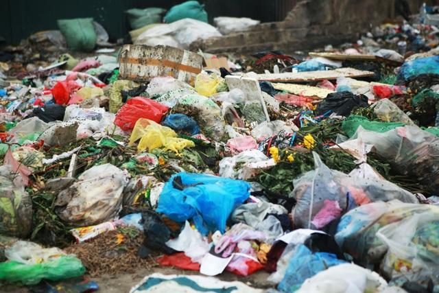 Dân lo lắng bệnh tật vì sống gần điểm trung chuyển rác - 9