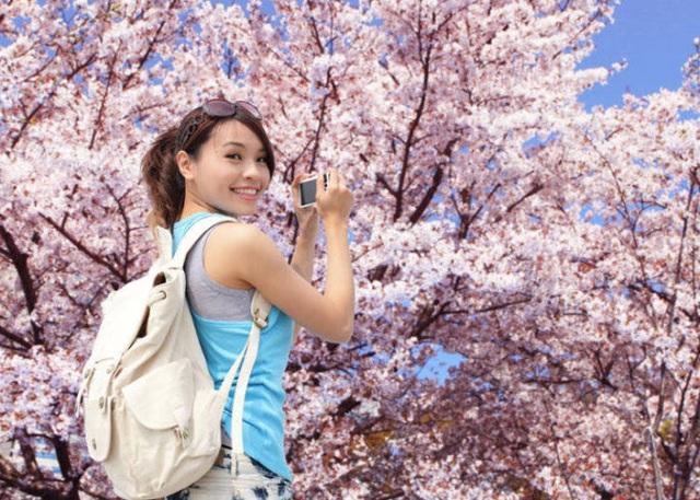 Tuần lễ vàng: Kỳ nghỉ mùa xuân rực rỡ của người dân xứ hoa anh đào - 1