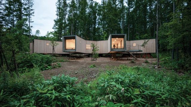 Nhà nghỉ dưỡng bằng gỗ ẩn mình giữa rừng cây ở Hokkaido, Nhật Bản - 2