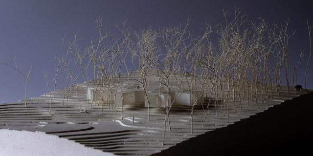 Nhà nghỉ dưỡng bằng gỗ ẩn mình giữa rừng cây ở Hokkaido, Nhật Bản - 10