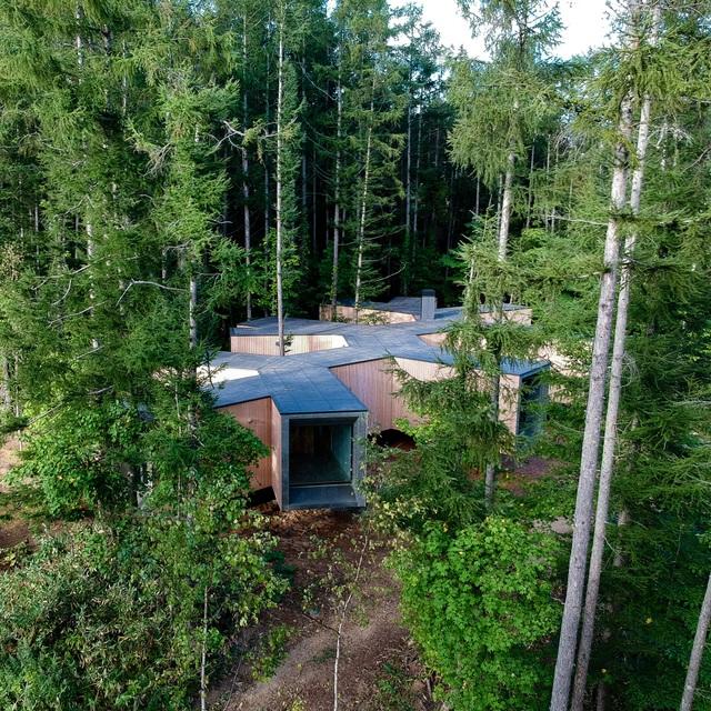 Nhà nghỉ dưỡng bằng gỗ ẩn mình giữa rừng cây ở Hokkaido, Nhật Bản - 4