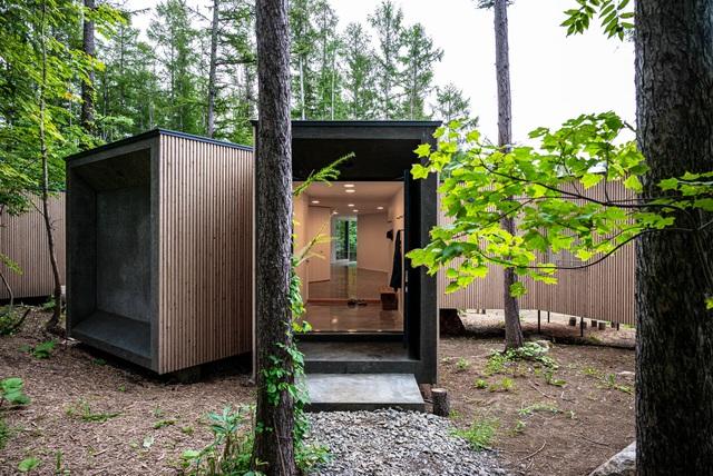 Nhà nghỉ dưỡng bằng gỗ ẩn mình giữa rừng cây ở Hokkaido, Nhật Bản - 9