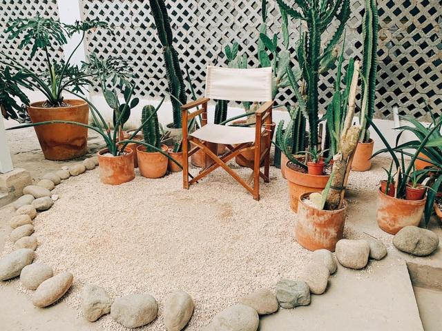 4 quán cà phê phong cách nhiệt đới đẹp như trời Âu hút khách ở Sài Gòn - 6