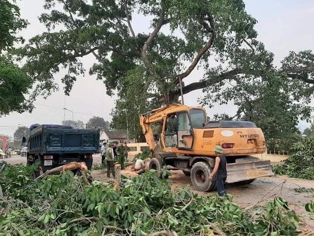 Sự việc xảy ra, UBND xã Nghĩa Khánh, Công an xã Nghĩa Khánh cùng bà con nhân dân huy động máy móc, cưa xăng để cắt dọn cành cây mất hơn 3 tiếng đồng hồ mới thông được con đường liên huyện.