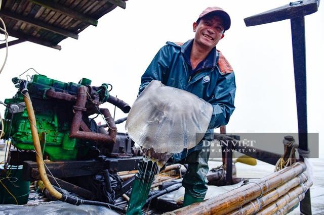 Vào mùa sứa biển, ngư dân Thanh Hóa có tiền triệu nhờ lộc trời - 1