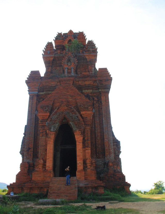 Unique thousand-year-old Cham towers cluster in Binh Dinh attracts check-in guests - 4