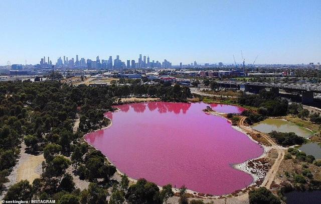 Lý giải vẻ đẹp của hồ nước tím đang gây sốt - 1
