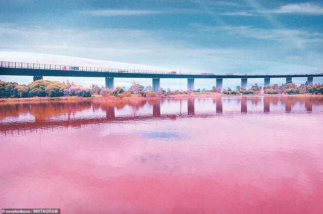 Lý giải vẻ đẹp của hồ nước tím đang gây sốt - 5