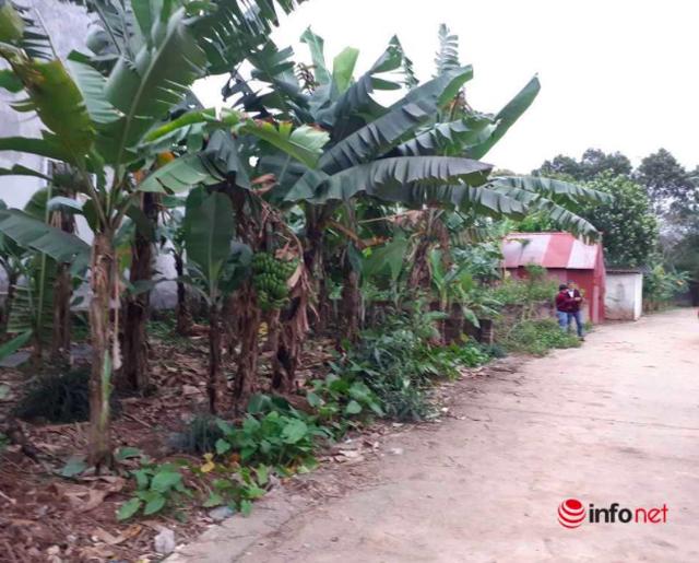 Giá đất Hà Nội dù lên đồng, ít giao dịch sớm muộn cũng sẽ tụt dốc - 2