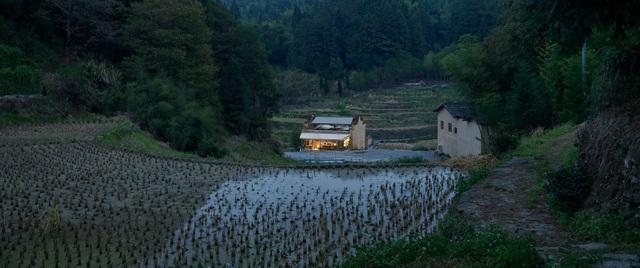 Quán cà phê kiêm hiệu sách, nằm giữa cánh đồng ở ngôi làng cổ 800 năm tuổi - 14