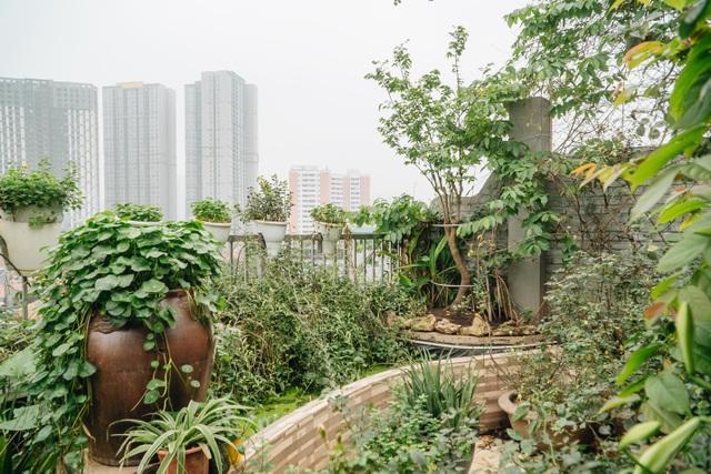 Vườn treo rộng 200m2 ngập sắc hoa loa kèn giữa lòng Hà Nội - 8