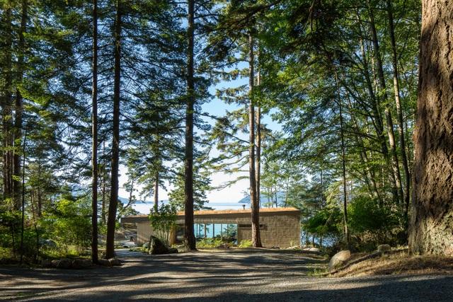 Nhà hình học nằm ở phần lõm của sườn đồi với vườn cây trên mái - 1