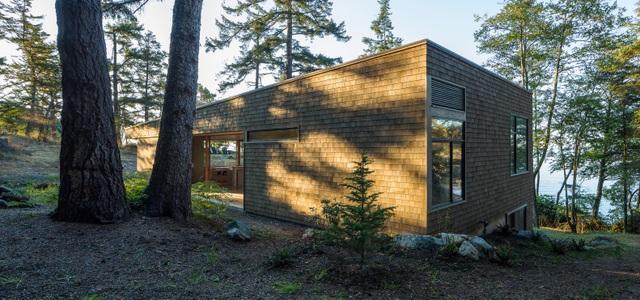 Nhà hình học nằm ở phần lõm của sườn đồi với vườn cây trên mái - 7