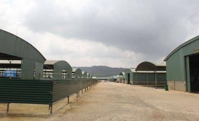 Dự án nuôi bò 4.500 tỷ đồng liên quan ông Trần Bắc Hà xin tái cơ cấu - 2