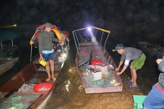Đã mắt những mẻ vó đèn, mỗi lần kéo gần cả tấn cá - 10