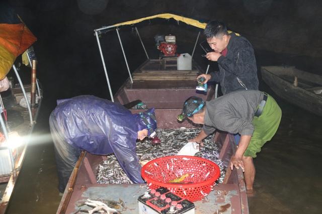 Đã mắt những mẻ vó đèn, mỗi lần kéo gần cả tấn cá - 12