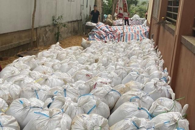 Tiêu hủy gần 480 tấn hải sản tồn kho mắc kẹt sau sự cố Formosa - 1