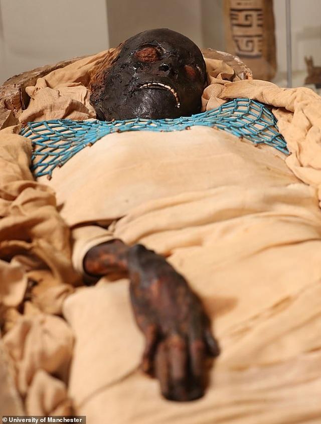 Phát hiện bất ngờ về xác ướp người phụ nữ Ai Cập 2.600 năm tuổi nổi tiếng - 3