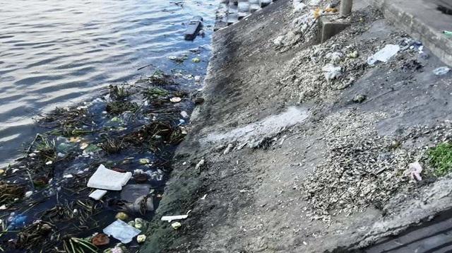 Kinh hãi  dòng nước thải đen ngòm tuồn thẳng ra sông - 1