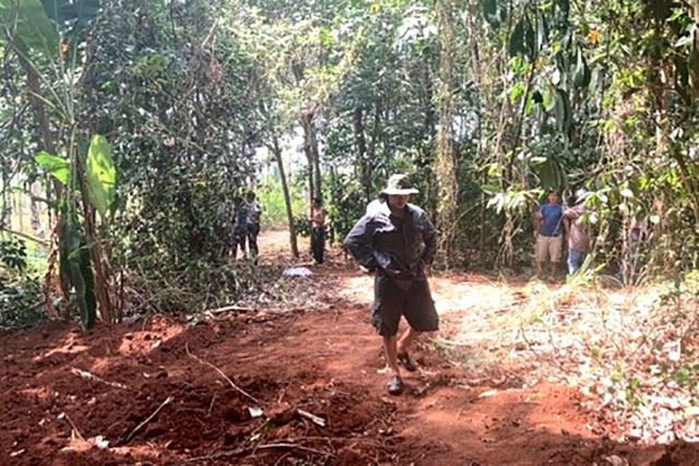 Lén lút chôn 138 con heo, chủ trại bị phạt kịch khung 8 triệu đồng - 1