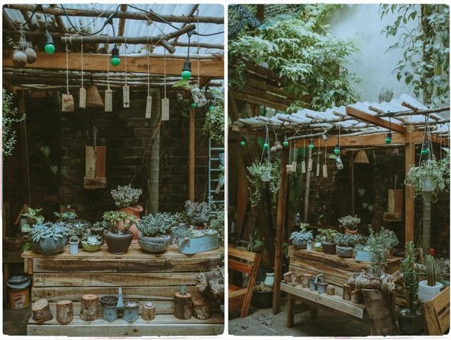 Quán cà phê chữa lành tâm hồn ở Đà Nẵng, khách trả tiền theo sự hài lòng - 4