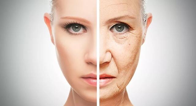 Chúng ta có thể làm chậm quá trình lão hóa không và đến mức độ nào? - 1