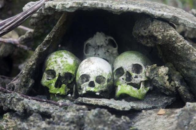 Rùng rợn tập tục trên đảo sọ người: Mai táng người đã khuất bằng kiến - 1
