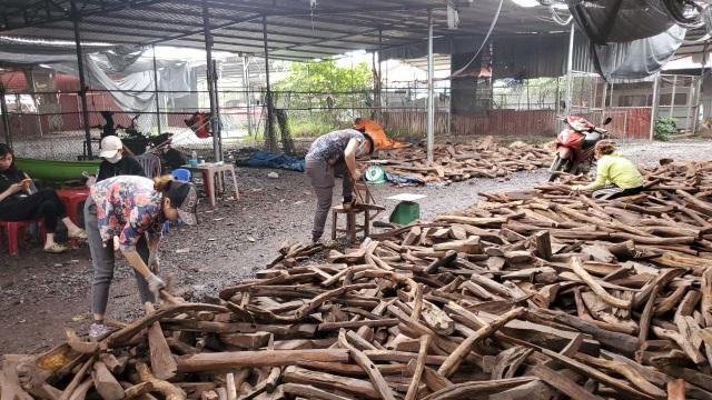 Ghé chợ củi khô xem người bán kiếm trăm triệu đồng mỗi năm - 8