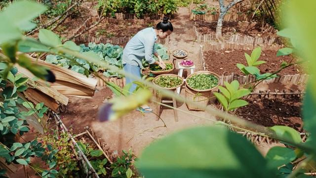 Cô gái bỏ phố về quê làm khu vườn 500m2 tràn ngập rau trái ở Bến Tre - 11