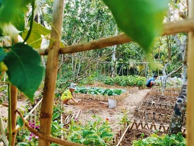 Cô gái bỏ phố về quê làm khu vườn 500m2 tràn ngập rau trái ở Bến Tre - 14