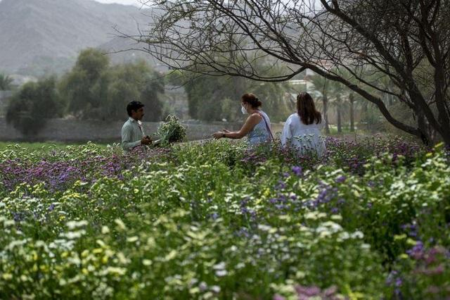 Nhân viên ngân hàng về hưu tạo vườn hoa rực rỡ giữa mảnh đất nắng, gió - 6