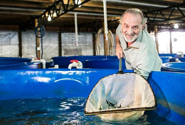 Bí mật nơi nông dân nuôi cá làm ra đặc sản thượng hạng hàng trăm triệu/kg - 2