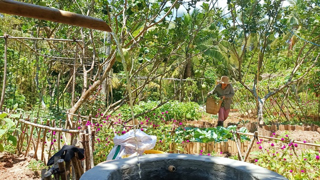 Cô gái bỏ phố về quê làm khu vườn 500m2 tràn ngập rau trái ở Bến Tre - 2