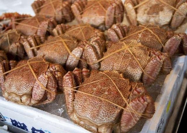Mùa xuân nhất định phải ghé Hokkaido ăn cua lông mỹ vị - 2