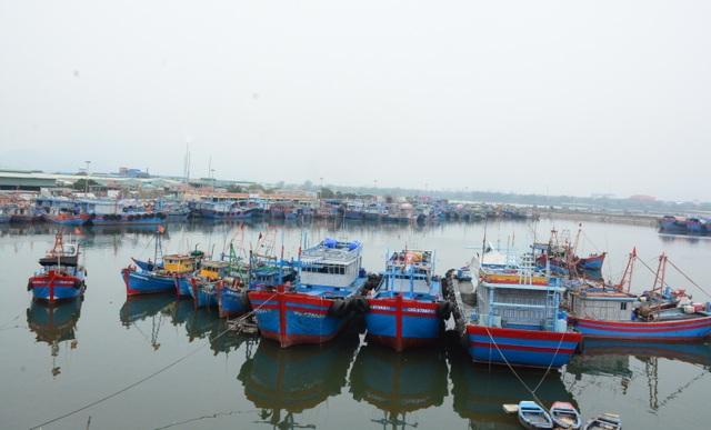 Giải pháp nào cho nghề cá khi thiếu lao động đi biển? - 3